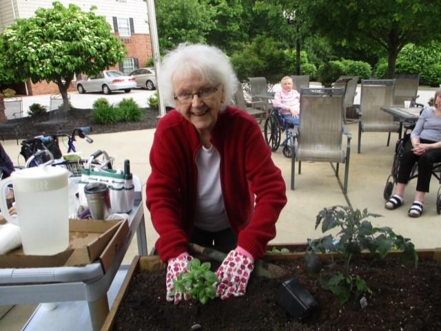 Assisted Living Social Activities
